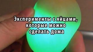 Эксперименты с яйцами, которые можно сделать дома