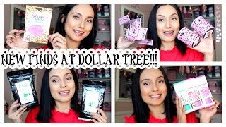 DOLLAR TREE HAUL | NEW ITEMS!!!