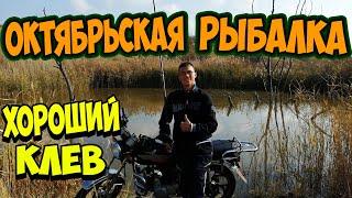 Октябрьская РЫБАЛКА Неплохой ОСЕННИЙ Клев!