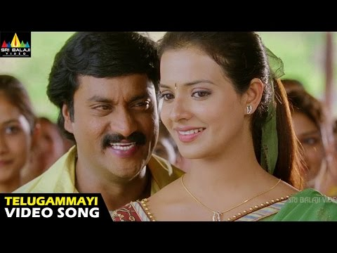 Maryada Ramanna Songs | Telugammayi Video Song | Sunil, Saloni | Sri Balaji Video