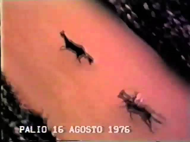 Palio 18 agosto 1976