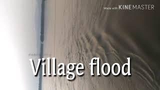 Silchar Flood 2018 ||Cachar District||Assam,India(Village flood)