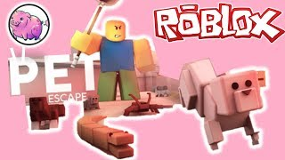 Roblox Pet Escape Summer 2019 - Collab with M1n3cr4ft123456789