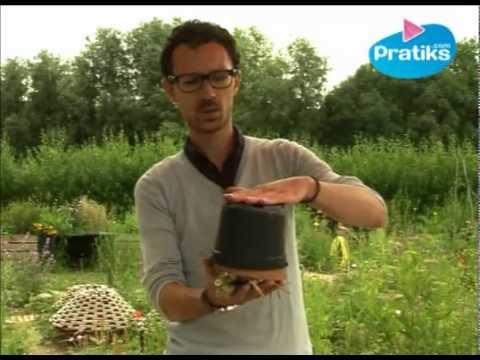 Comment faire un nichoir insectes youtube - Insecte de bois maison ...