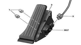 Remove/install accelerator pedal (C-Class-W204), (E-Class-W207), (SLK-R172)