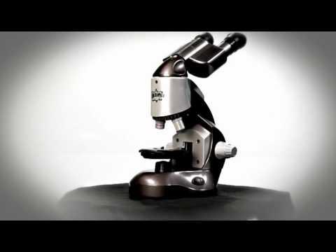 Edu-Science M1280X  Microscope | Toys R Us Canada