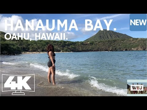 HANAUMA BAY - HONOLULU, HAWAII - AMAZING BEACH! 4K DRONE FOOTAGE.