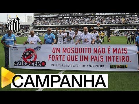 Ação pela erradicação do Aedes aegypti