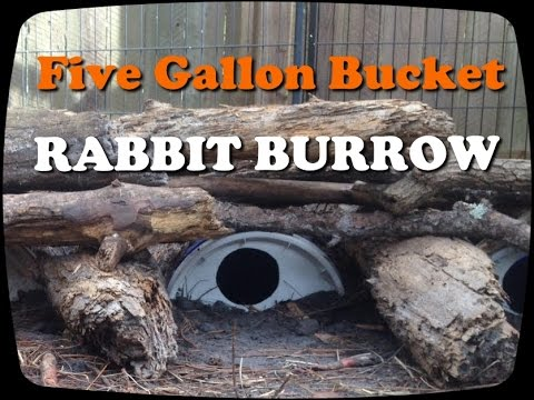 Rabbit burrow diy with 5 gallon bucket youtube How do you keep rabbits out of your garden