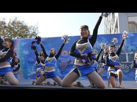 Cheerleading チア Bruno Mars Runaway Baby 早稲田大学チアダンスサークルMYNX 早稲田祭④