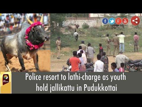 Police resort to lathi-charge as youth hold jallikattu in Pudukkottai