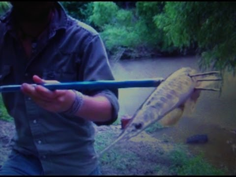 How To Use A Spearpole (Hawaiian Sling)