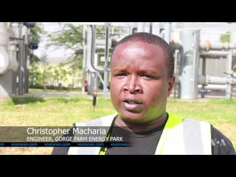 East Africa's Largest Biogas Energy Plant Supplies Kenya's National Grid
