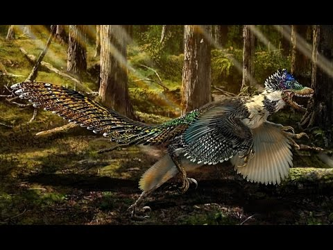 Zhenyuanlong suni: biggest ever winged dinosaur is found in China