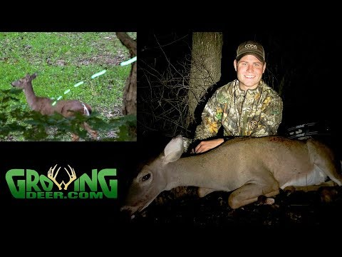 Deer Hunting: A Cold Front, Bottleneck, A Small Hidden Food Plot  On 80 Acres | Tagging Deer! (#516)