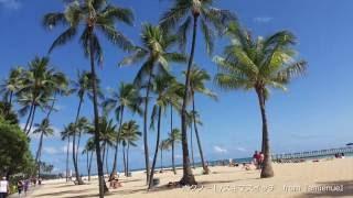 【作業用BGM】ハワイアンミュージック・Hawaiian Music/Jeff Peterson ジェフ・ピーターソン