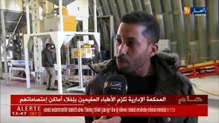 Akyurek Technology - Seed Processing Plant in Algeria - Tébessa