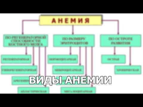 Анемия – симптомы, причины, виды, лечение и профилактика