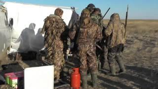 охота на гуся 2015(Охота на белолобого гуся в Саратовской области., 2015-04-23T14:11:14.000Z)