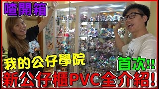 【公仔抽獎】第一次(.艸.)介紹我的所有公仔PVC!!