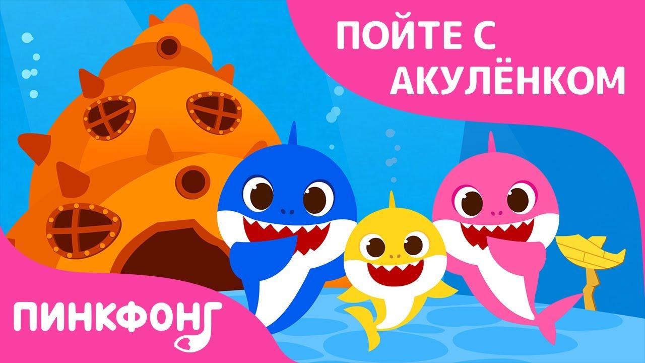 Дома у Акулёнка | Акулёнок | Пойте с Акулёнком | Пинкфонг Песни для Детей