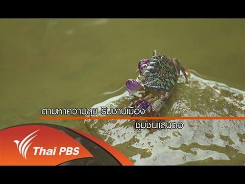 ทั่วถิ่นแดนไทย : สุขใกล้ตัว สุขใกล้เมือง ชุมชนแสนตอ กรุงเทพมหานคร (22 ส.ค. 58)