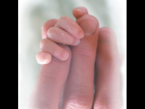 First 1000 Days & Quality ECE - FL Sen., Comm on Children, Families, and Elder Affairs