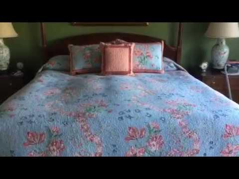 Hidden Goodness - Ragdoll Cats 🐱 on Bed Pillows - Floppycats