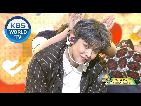 TOMORROW X TOGETHER - Cat & Dog [Music Bank/2019.04.26]