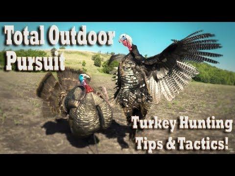 Early Season Turkey Hunting - YouTube
