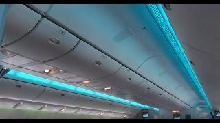 Garuda Indonesia Flight Experience LGW-AMS (bad weather & lightning strike)