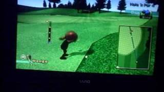 The Game Stop Nintendo Wii Sports pack wiimote attachment: Golf Club