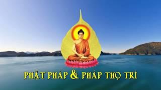 Phật Pháp & Pháp Thọ Trì Kỳ 2 - Nhân Duyên Trong Đời Sống ( Nhân Duyên Tốt & Nhân Duyên Sấu )