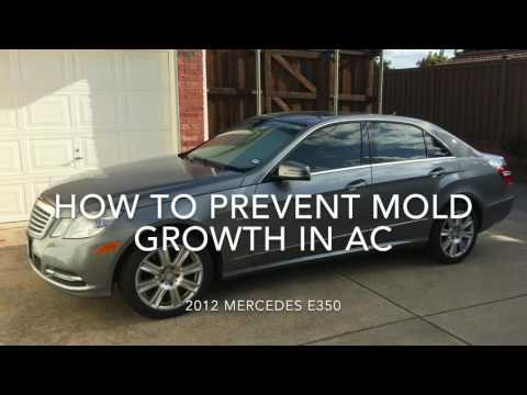 How To Prevent Mold Growth In Your Car's AC
