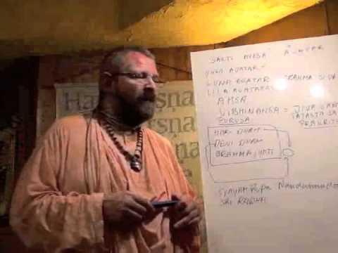 Swami Paramadvaiti. Avatar (Science of Avatars)