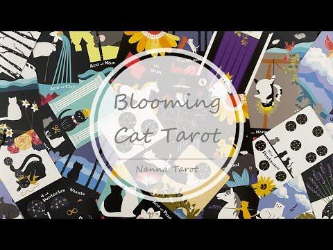 開箱  得意貓咪塔羅牌 • Blooming Cat Tarot // Nanna Tarot