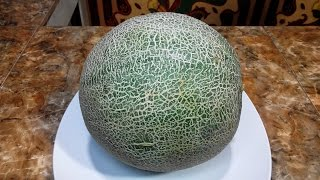 What happens when you eat melon!