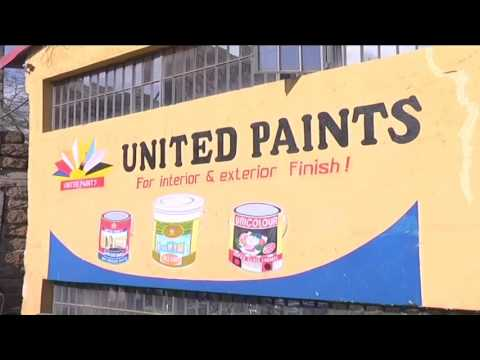 An entrepreneur painting a bright future