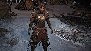 Path of Exile: Wasteland Body Armour