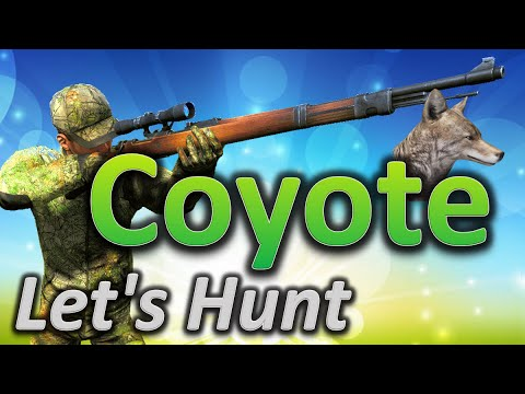 theHunter Hunting Game - Let's Hunt COYOTE (big coyote 57 ...