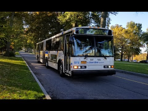 bee-line-bus:-route-1c,-1x,-14,-15,-40,-41-43-buses-@-south-plaza-hospital-drive
