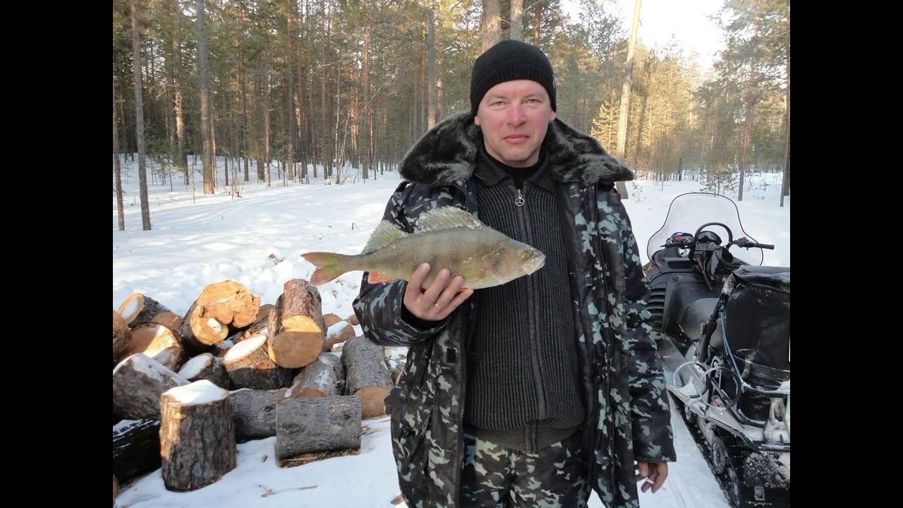 Рыбалка на озерах ХМАО. Трофейные окуни. Зачетные щуки.