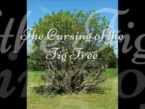 The Cursing of the Fig Tree Youtube