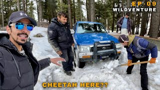 STUCK IN HEAVY SNOW - Naltar Ka Jungle Or Leopard Ka Khatraa, GB