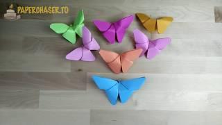 [Paper Craft Tutorial] DIY Paper Butterflies