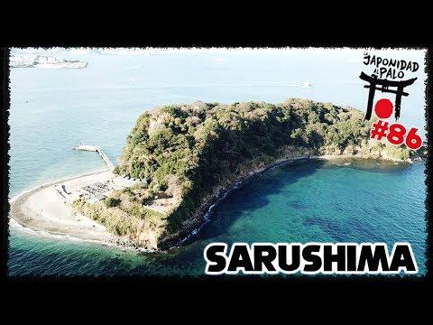 La isla de los monos (sin monos) - SARUSHIMA [LJAP 86]