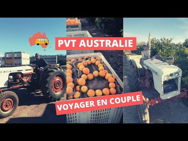 AUSTRALIE : Travailler en ferme, achat de 4*4, road trip en couple !