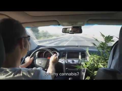 The Scientist ~ Medical Marijuana  ~ Documentary New 2015HD