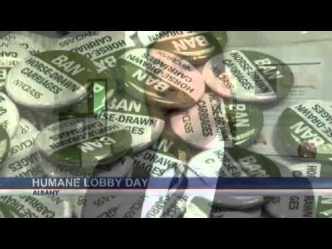 Animal rights advocates lobby in Albany