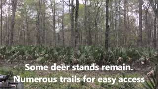 160 ac - Tensas Parish Louisiana Hunting Land for Sale -www.RecLand.net